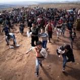 Губернаторы 24штатов СШАнаотрез отказываются принимать беженцев