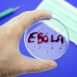 В Либерии зафиксирован новый случай лихорадки Эбола
