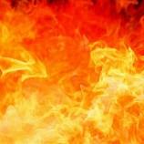 Минсельхоз предложил сжигать еду, в которой «скрывается» пальмовое масло