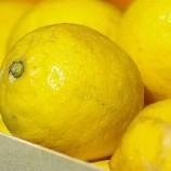 Лимонов прокомментировал запрет в России турецких лимонов