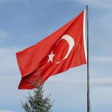 Турция против ФРГ: почему скандал с признанием геноцида выгоден всем